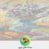 کانال عیدانه های نوروز